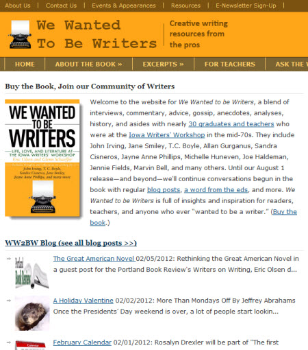 We Wanted to Be Writers website